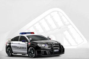 Citroën C5 Police