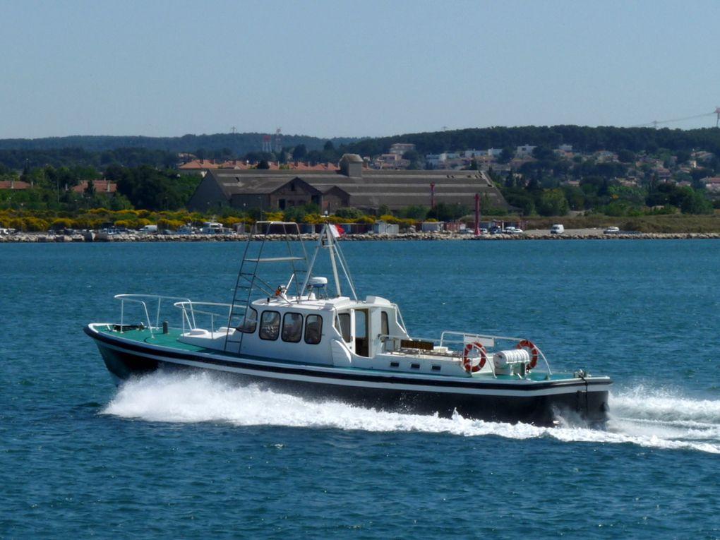 ESTEOU , P 192 , Pilotine de Port de Bouc / Fos sur Mer
