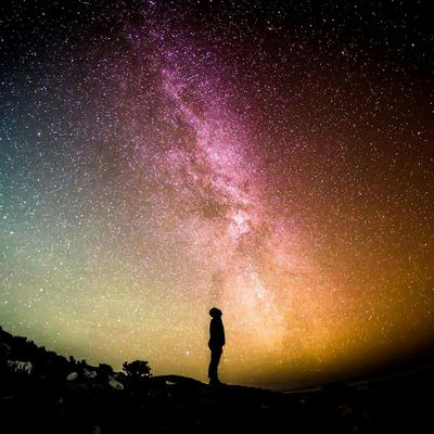 Darwinisme: de l'espèce à l'espace.