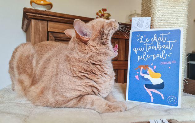 Roman feelgood : le chat qui tombait pil-poil
