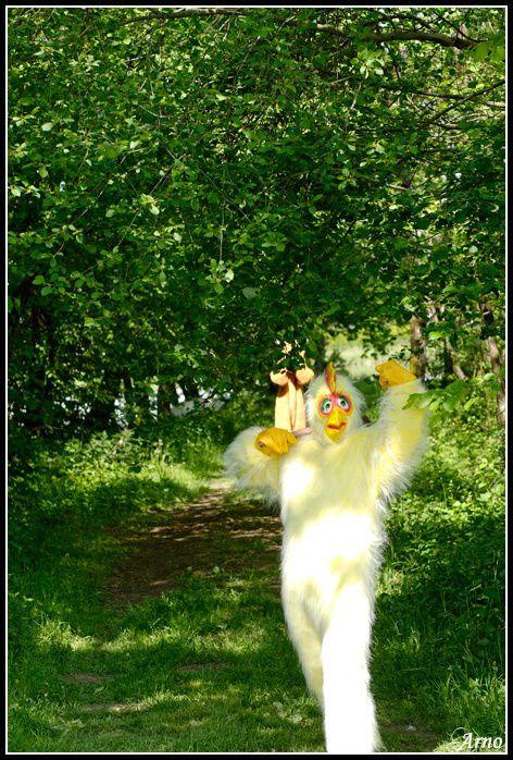La grande chasse aux oeufs... Retrouvez Jeannot, Jannette, Mme Cocotte, Goupilou, Minilapinou et Mister Pakman... les amis du ois des Gouttes Boullées qui vous attendent pour une quête amusante, émouvante et... éprouvante!