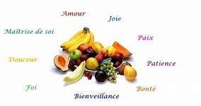 Homélie 7ème dimanche après la Pentecôte: Les bons et les mauvais fruits (2019)