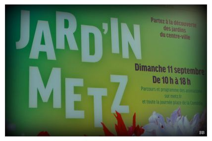 JARD'IN METZ le 11 septembre 2016