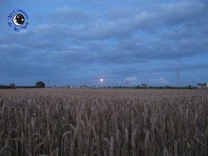 Le vent a rendez-vous avec la lune...
