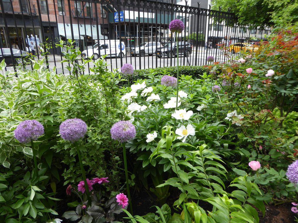 New York City, Greenwich Village - Mai 2017.