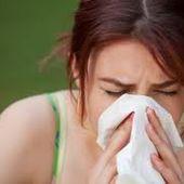 Allergie da pollini, periodi critici e cure - Berenice