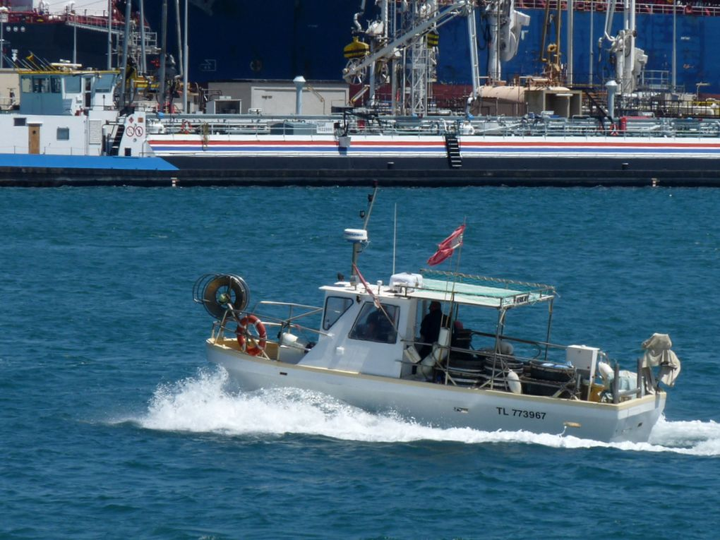 VERSEAU   ,  TL 773967  , en rade de Port de Bouc le 21 mai 2016