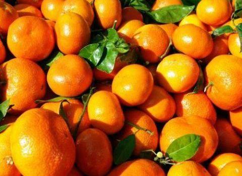 Séduction d'orange