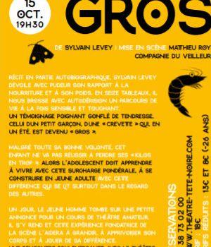 GROS de Sylvain Levey : spectacle et atelier en famille dès 10 ans en octobre au Théâtre de la Tête noire – Saran