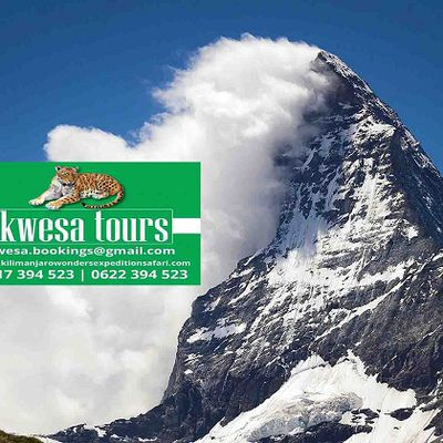 Tanzania Kilimanjaro and Safari Adventure Tour can Make Your Day a Complete One!