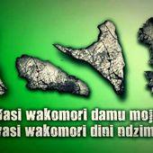 Le patriotisme et l'esprit de responsabilité au service des Comores  - darcharimikidache.over-blog.com