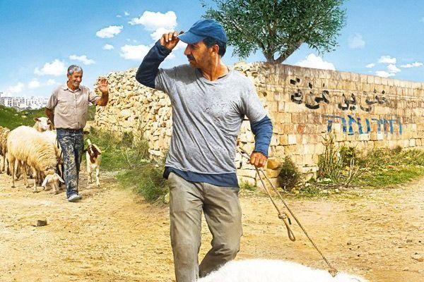 LE COCHON DE GAZA / CINEMA / SYLVAIN ESTIBAL / RAFRAICHISSEMENT ASSURE