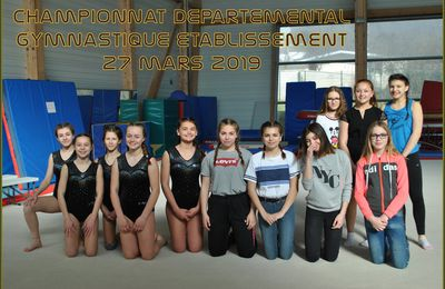 CHAMPIONNAT DEPARTEMENTAL GYMNASTIQUE ETABLISSEMENT 2018/2019