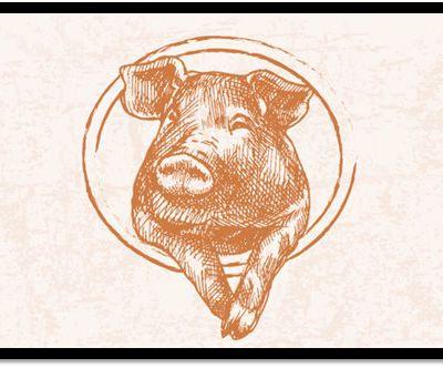 Vente directe de porc Bio