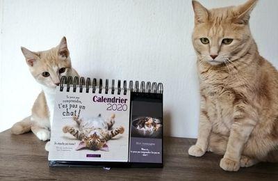 Ma sélection de calendriers 2020 !