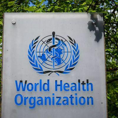 Selon un nouveau rapport de l'OMS, les fabricants tentent d'éviter la réglementation des cigarettes électroniques et des produits du tabac chauffés