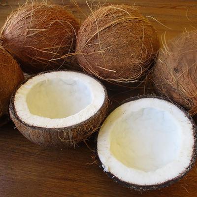 Achat groupé – Noix de Coco fraîches, bio, certifiées ECOCERT