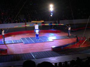 sortie au cirque