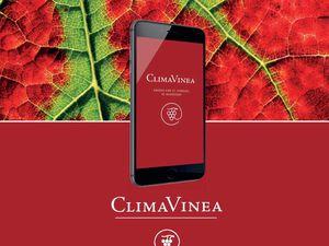 ClimaVinea: l'application Iphone indispensable à tous les passionnés de vin de Bourgogne