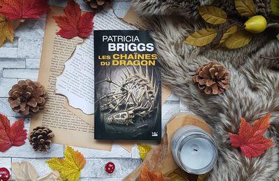 Hurog, Tome 1 : Les Chaînes du dragon - Patricia Briggs