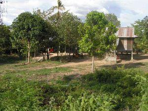 HABITAT AU CAMBODGE
