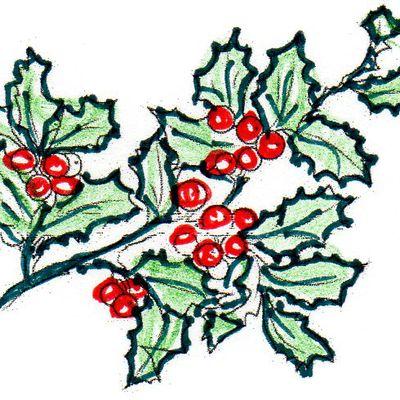 Les secrets de la nature  pour Noël