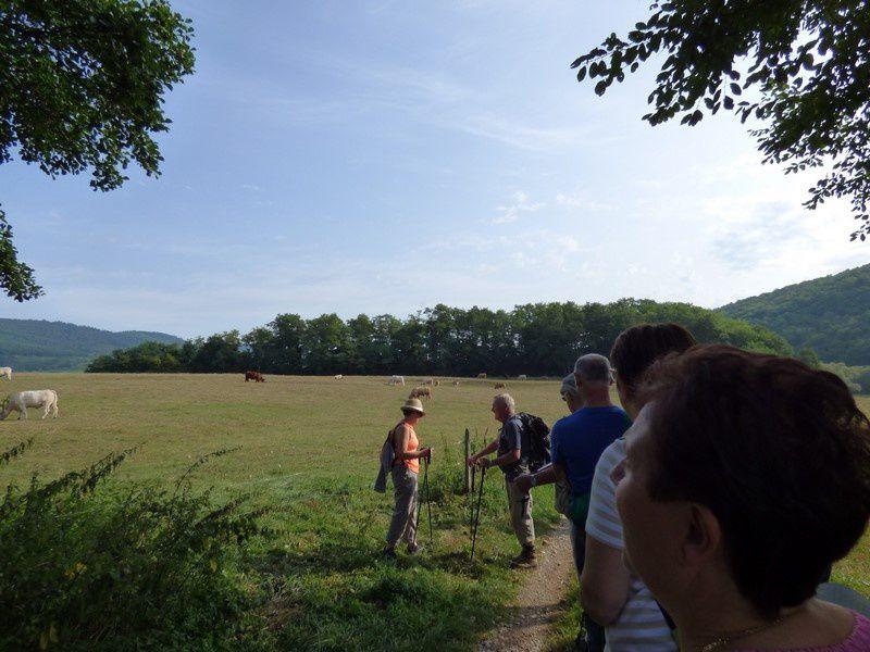 Journée Cohésion avec sortie pédestre pour l'ASOR Colmar