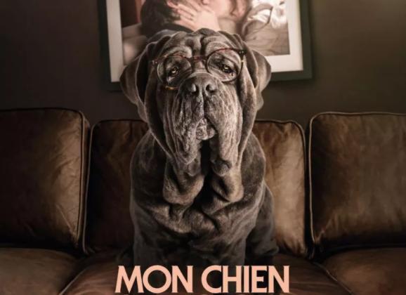 Critique Ciné : Mon Chien Stupide (2019)