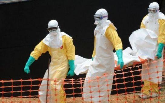 """Virus Ebola: l'épidémie est """"sous contrôle"""" en Guinée"""