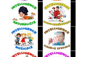 Recherche d'expériences avec les IM (Intelligences multiples) par Alysse