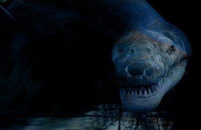 Un monstre inconnu dans l'Arctique ?