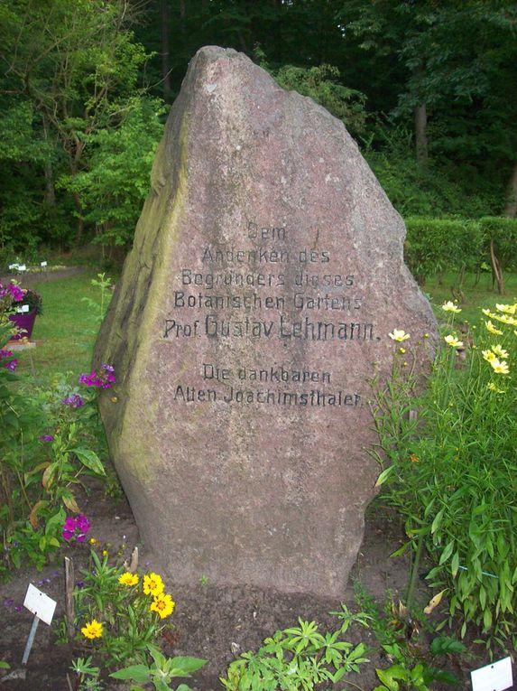 Zu Besuch im Lehmann-Garten
