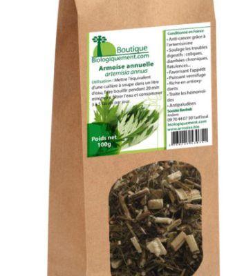 La plante artemisia agirait sur le covid-19
