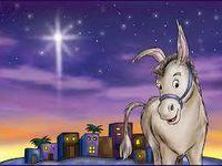 """Il y avait dans la crèche un boeuf et un âne... Parlons aujourd'hui de l'âne """"ce merveilleux animal affirment tous ceux qui ont eu l'occasion d'en approcher ! Voici son histoire - Enfin... qui voudra participer à l'aide apportée à BOTTER, l'âne à 3 pattes du refuge ADADA ?"""