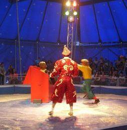Que vive le cirque !