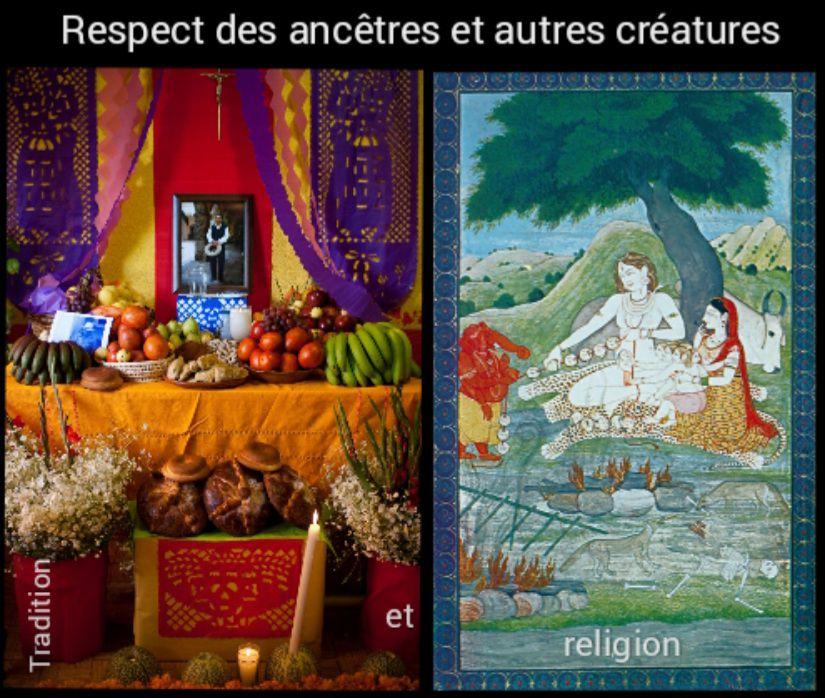 Respect des ancêtres et de la nature