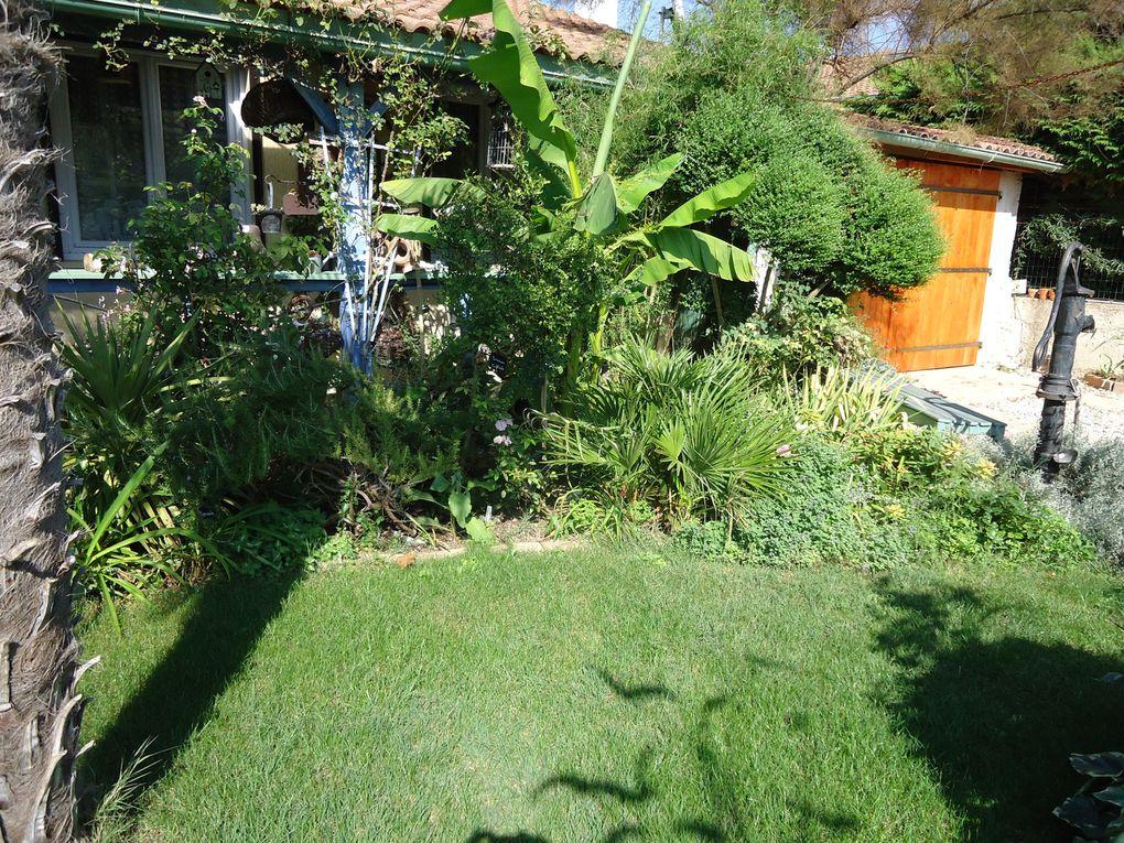 en septembre le fénéant peut aller se pendre.. mois derentrée mois de soucis mois de labeur ,septembre nous fait souvent oublier qu'il est un des plus beaux de l'année au jardin...avec une palette de magnifiques couleurs !