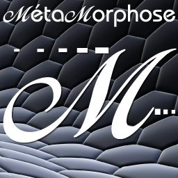 www.web-metamorphose.fr