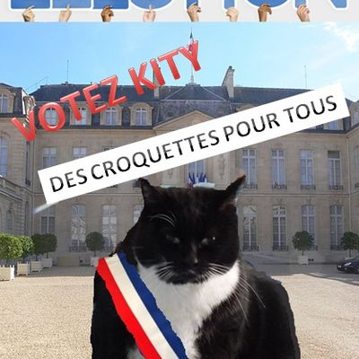 campagne electorale kity