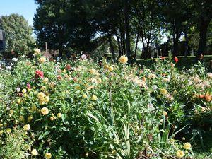 Les jardins : fleuriste et potager