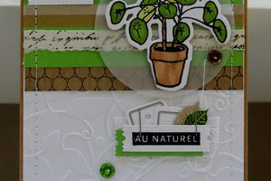 Une carte 'nature'