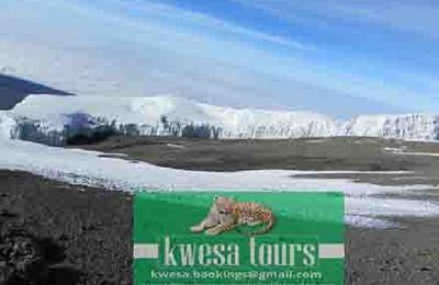 An Exciting Safari Tanzania Kilimanjaro Experience Is Waiting