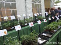 La fête des plantes de Beervelde mai 2015 1/2