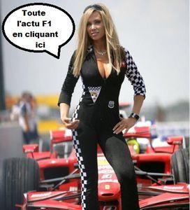 la Ferrari victorieuse de Vetel