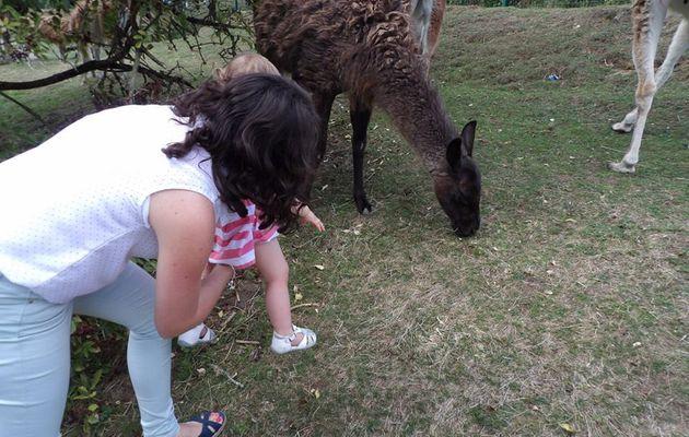 Sortie: Zoo de Maubeuge