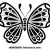 Le papillon s'envole 14