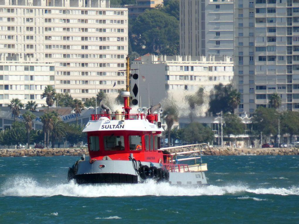 SULTAN , remorqueur , en petite rade de Toulon le 25 septembre 2019