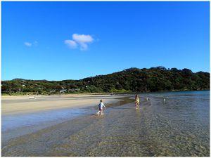 Great Barrier Island (bis)