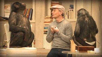 """Résultats du concours """"Les Bonobos"""" de Laurent Baffie."""
