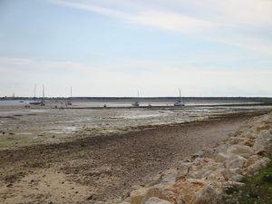 l'activité principale à la pointe est de ramasser des algues et des coquillages à marée basse.